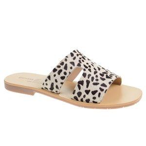 Chinese Laundry Mannie Sandal Black/White Cheetah